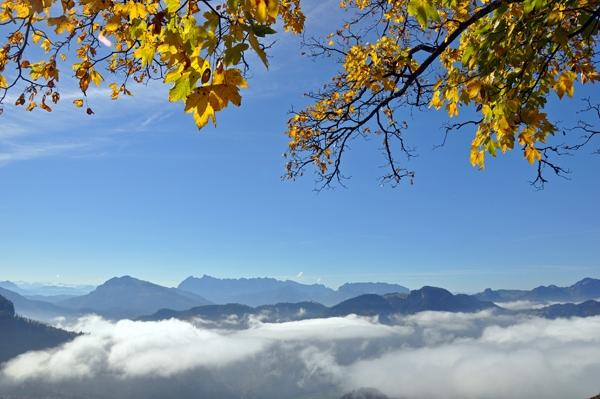 Jochberg (1) - Auf dem Weg zur Jochberg-Alm bei Unterwössen