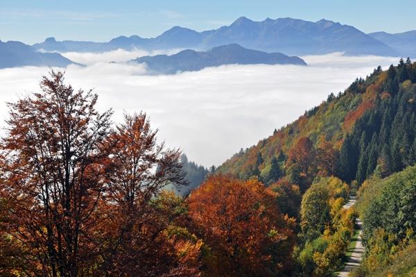 Jochberg (2) - Auf dem Weg zur Jochberg-Alm bei Unterwössen