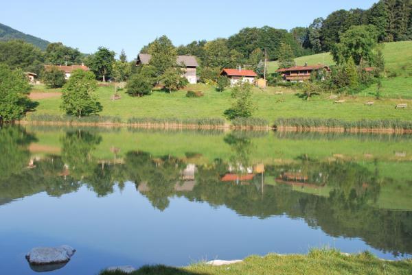 Wössner See (3) - Rund um den Wössner See (Bild 3)