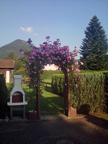 Der Gartengrill für abendliche Feiern